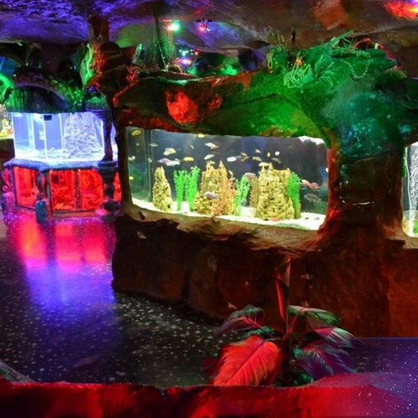 Евпаторийский аквариум 8