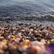 Выходные в Крыму на Черном море 7