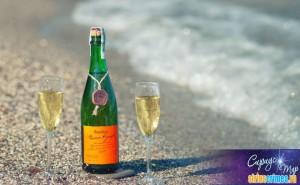 Завод шампанских вин Новый свет-5